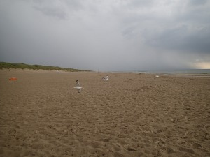 Keeten Beach, where the first battle of the Helder campaign took place