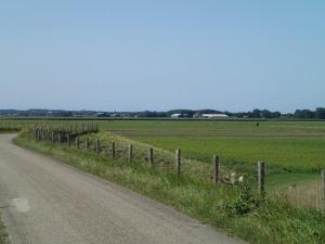 Road to Schoorl, looking towards sand dunes